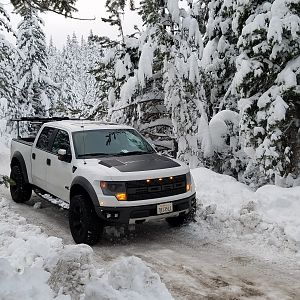 SNOW RAPTOR 2014 with Perch Mod and Nitto Trail Grapperlers 35 x 12.5 in TAHOE 2017