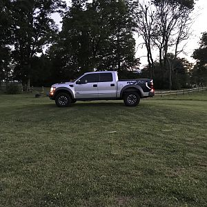 Love at first site, 2012 raptor