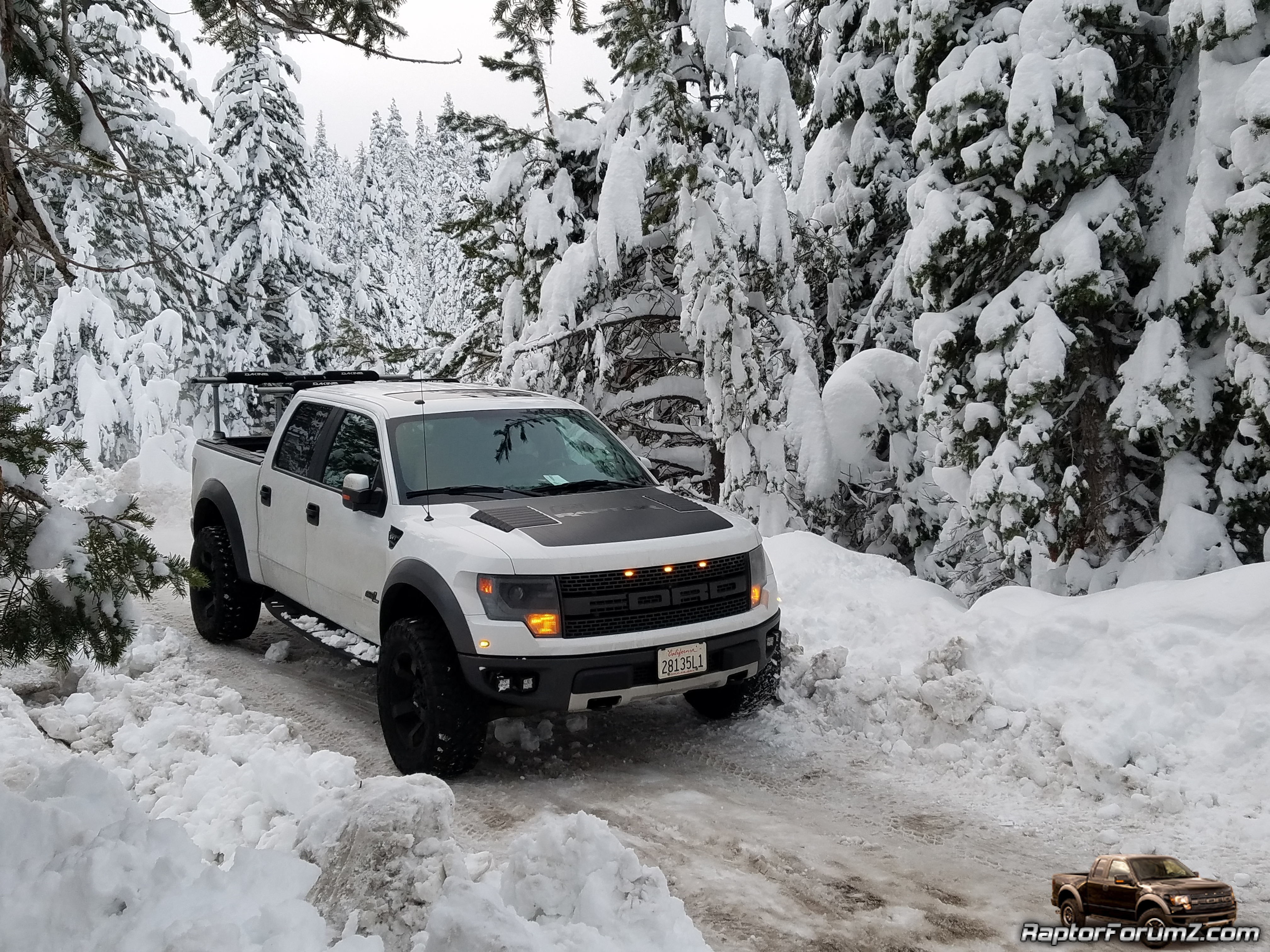 Snow Raptor 2014 With Perch Mod And Nitto Trail
